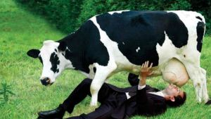 Dont-drink-cows-milk